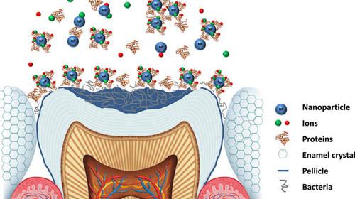 nanotechnology in dental practice